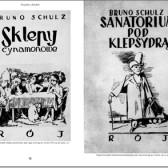 Bruno Schultz Księga obrazów